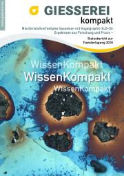 Mischkristallverfestigtes Gusseisen mit Kugelgraphit (GJS-Si) Ergebnisse aus Forschung und Praxis / Sonderpreis für BDG-Mitglieder: 30,00 Euro